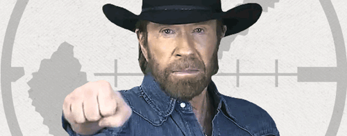 Chuck Norris Fist Punch